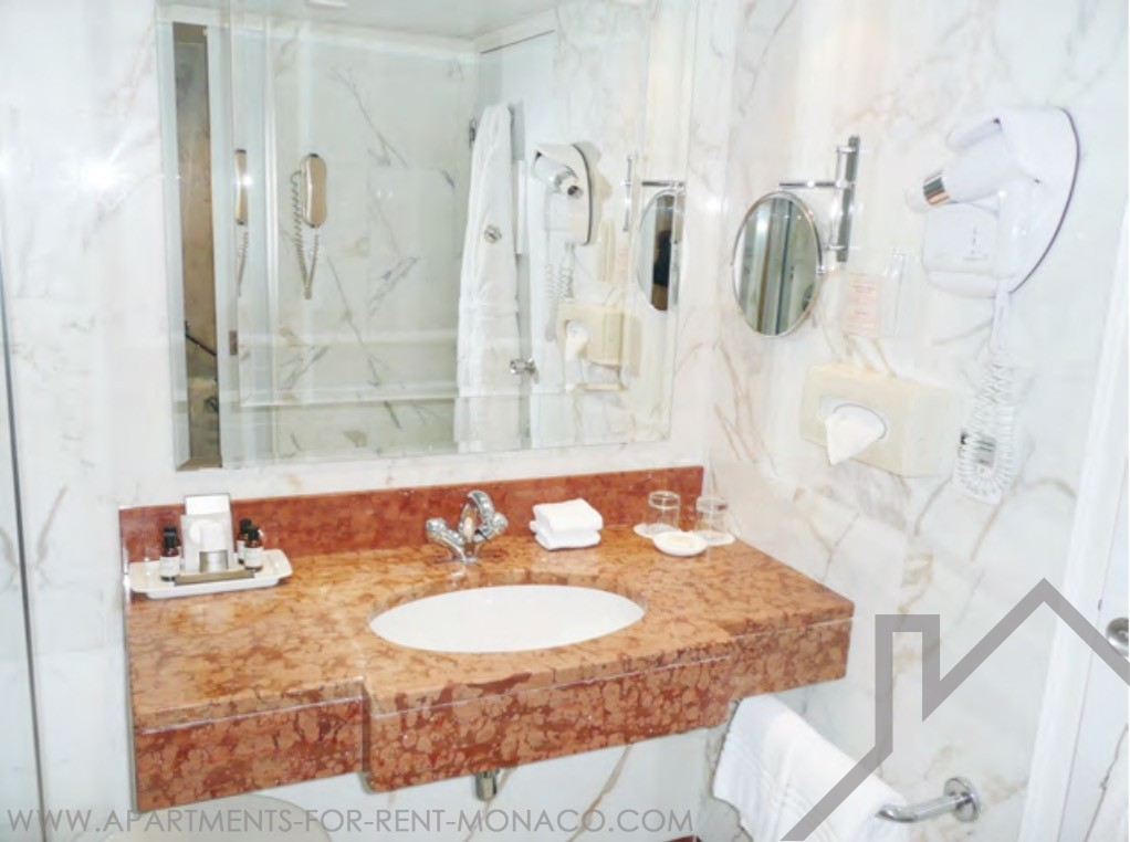 furnished one bedroom apartment in the fairmont apartments for rent