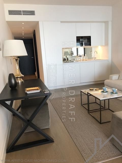 MIRABEAU : Most perfect and luxurious studio - Apartments for rent in Monaco