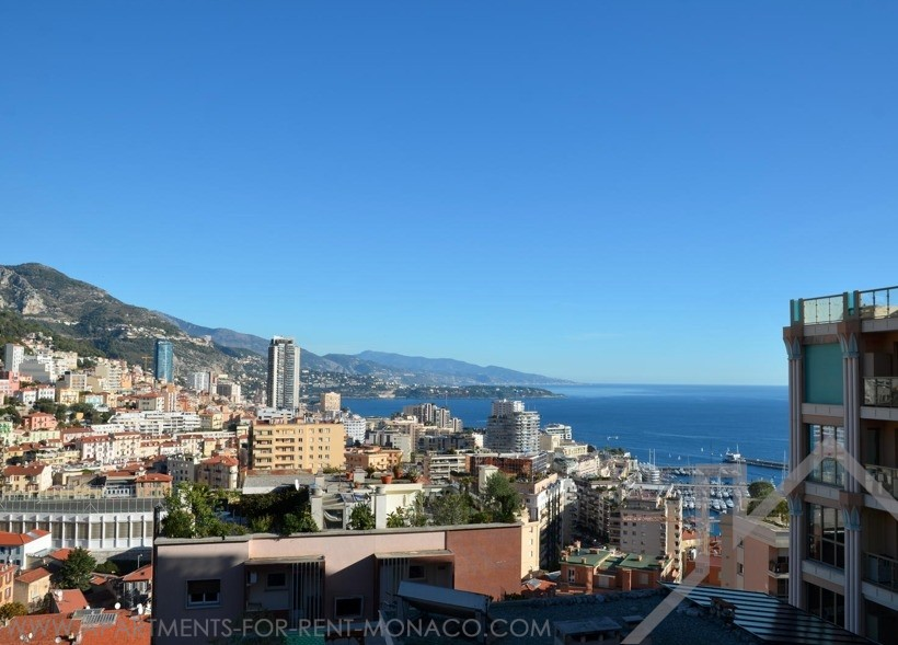 3 bedrooms/renovated/amazing view - Apartments for rent in Monaco