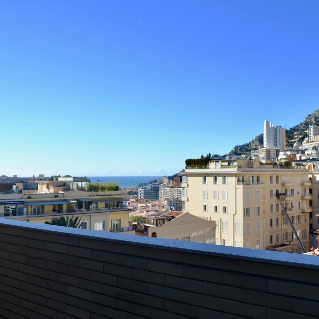 3 PIECES SAINT ANDRE - Apartments for rent in Monaco