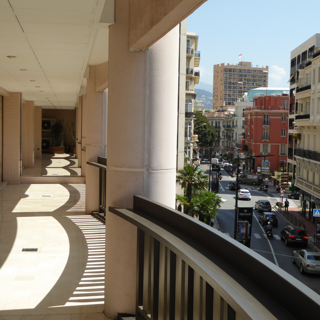 PRODUIT RARE ET D'EXCEPTION - Apartments for rent in Monaco