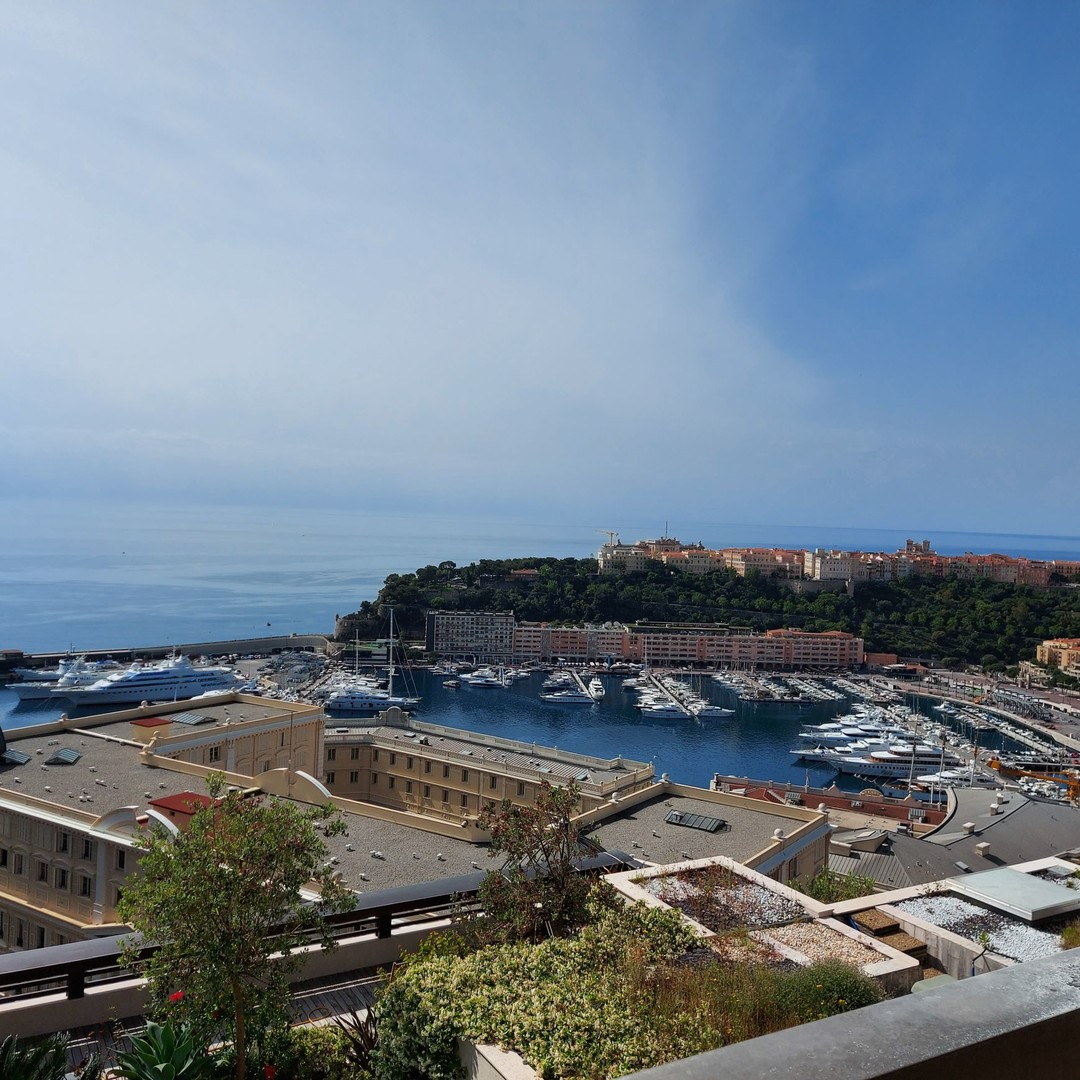 Beautiful 3 bedrooms flat on high floor - Park Palace - Apartments for rent in Monaco
