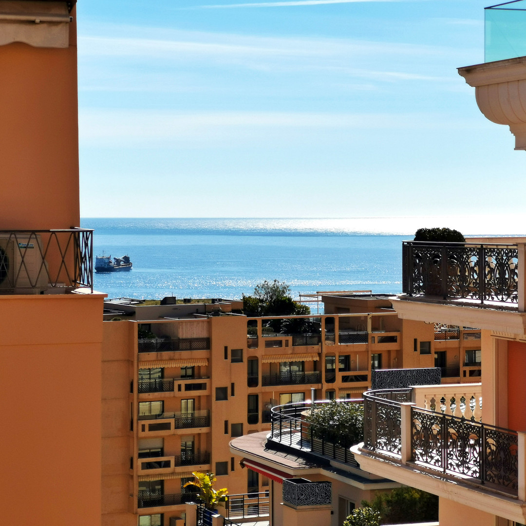 Monte Carlo, studio fitted out in 2 rooms - Renovated - Center - Apartments for rent in Monaco