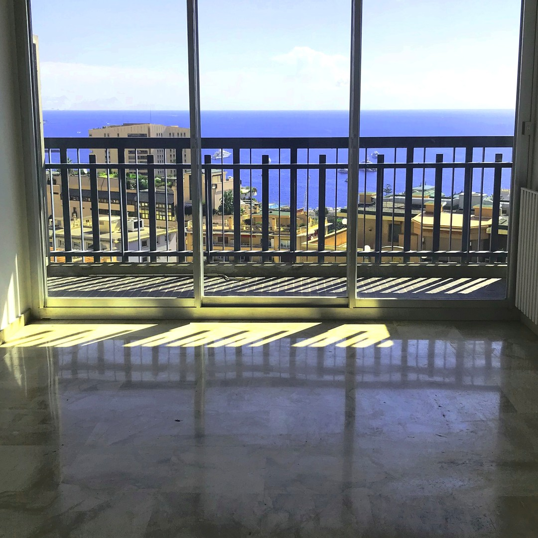 Real Estate Studio Apartments For Rent: Apartments For Rent In Monaco